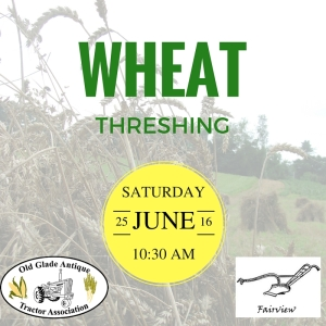 Wheat Threshing 6-25-16